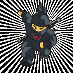 wushu kung fu sanda